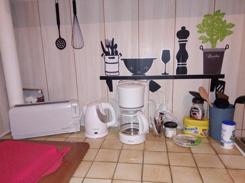 Idéal grande famille ou colocation, holiday rental in Jouet sur l'Aubois