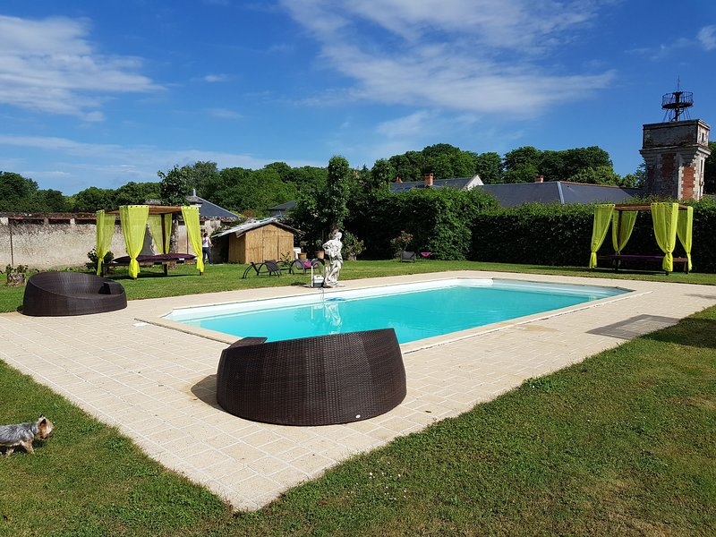 Big mansion with swimming-pool, holiday rental in Villedomer
