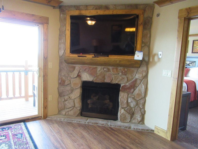 Gas log fireplace Retractable TV