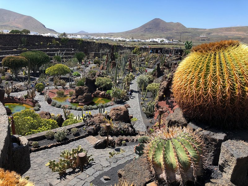 Stunning cactus garden in Guatiza. From the Beach House it's a 20 minute drive.