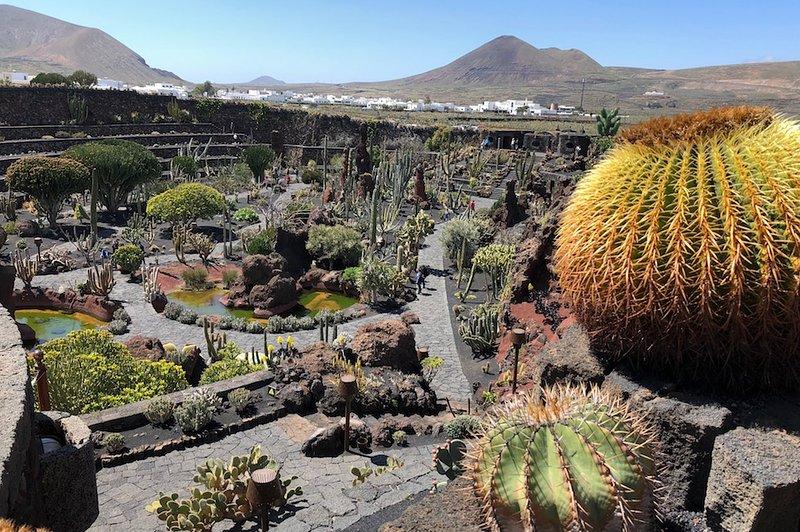 Jardín de cactus en Guatiza, a 15 minutos en coche.