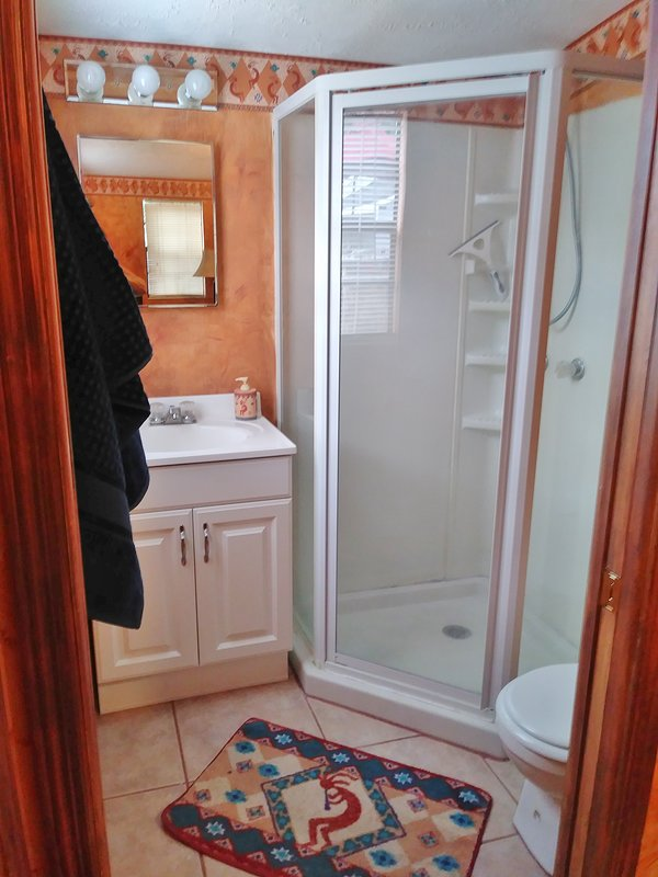 Bathroom w/ walk-in shower. Sliding pocket door for privacy