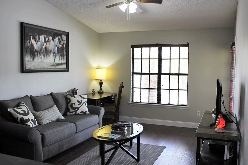 Gated community brand new condo minutes from parks, holiday rental in Orlo Vista