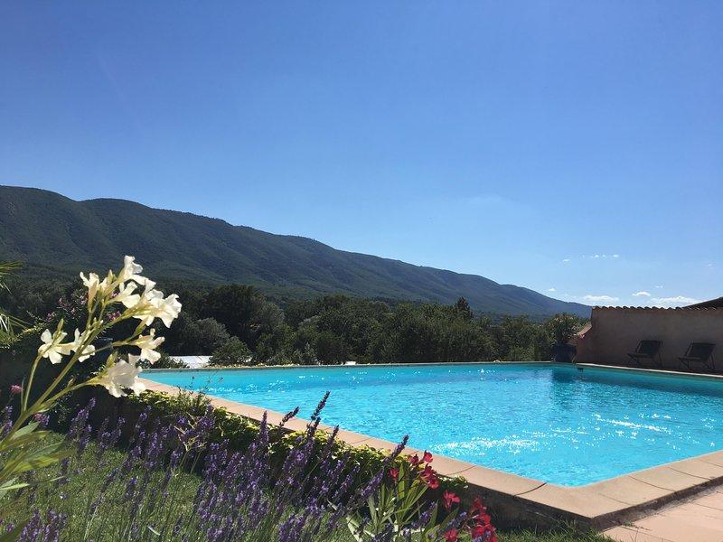 Domaine de la Bastidonne, Mas des Lavandes Céreste, holiday rental in Montjustin