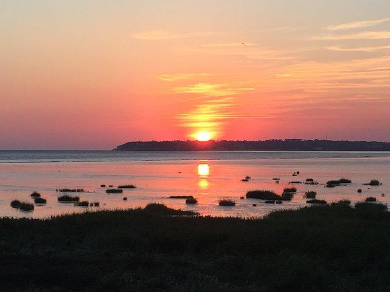 Talmont on the Gironde - 10 minutes away