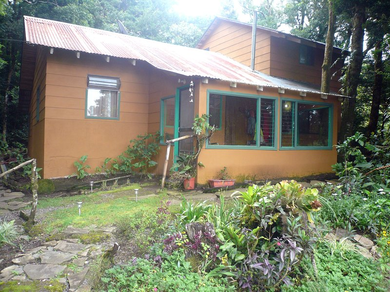 Ceci est votre maison dans les bois