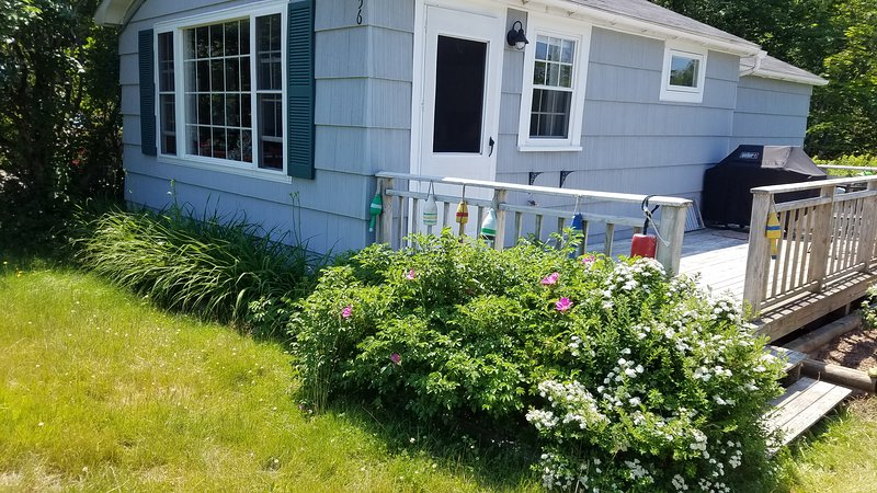 Ocean view Cottage, holiday rental in Acadia National Park