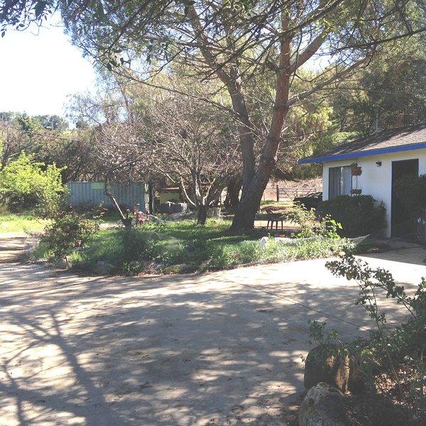 Country Studio with Alpaca's, vacation rental in Los Olivos
