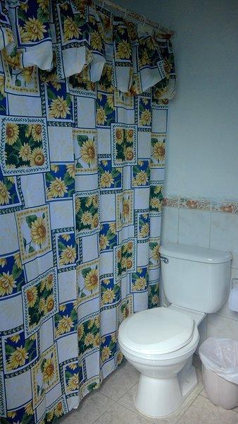 Salle de bain complète à l'extérieur.