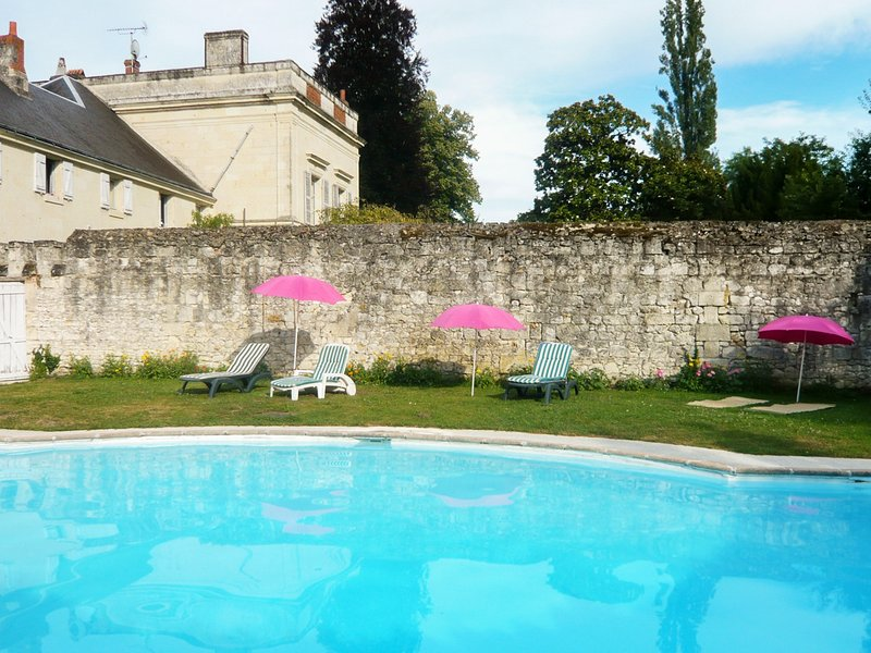 Big mansion with swimming-pool, holiday rental in Allonnes