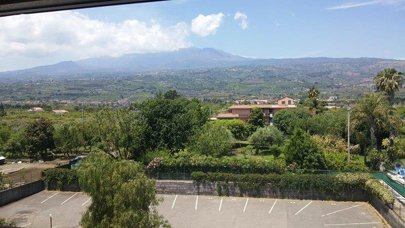 The splendid view of Mount Etna