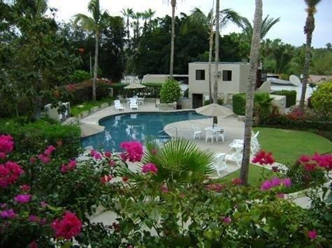 Newly Remolded Condo in the heart of San Jose del cabo ,walk to town and beach., holiday rental in Animas Bajas