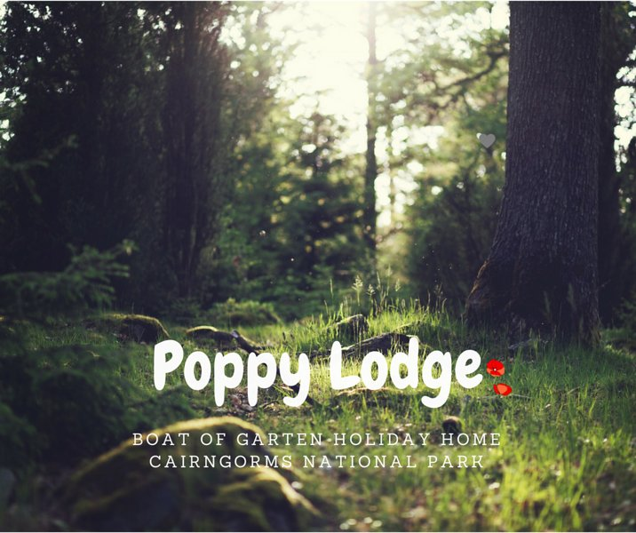 Poppy Lodge Boat of Garten, holiday rental in Badenoch and Strathspey