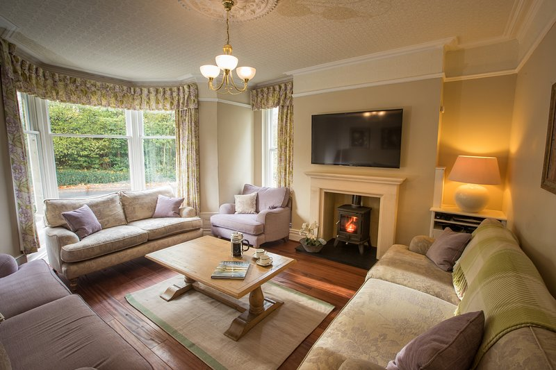 Lounge with log burner and 55 inch Sony TV with full Sky package