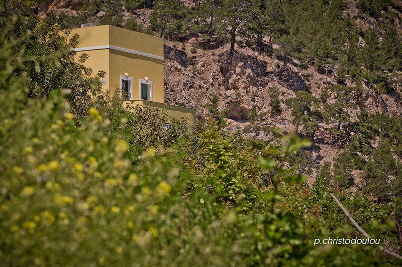 Mountain & Sea Villa Karpathos, holiday rental in Kira Panagia