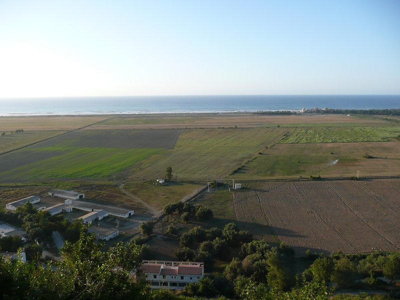 View of the sea and the family residence the olive grove