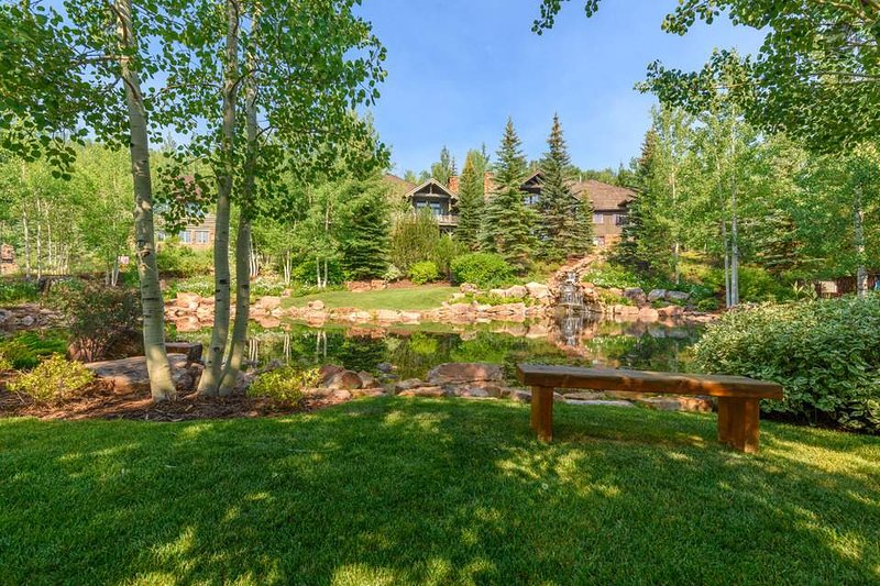 The home is located in a beautiful area full of aspens and pines.