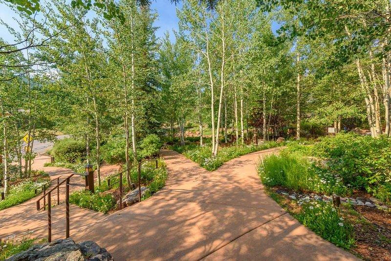 Walking paths wind through the aspen groves near the home.