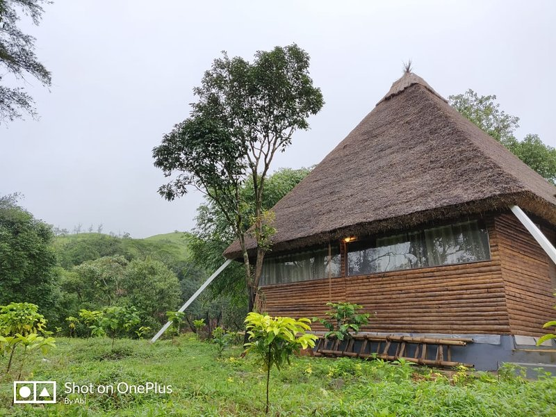 Hidden Valley Coorg |Forest Cabin | Private Falls, holiday rental in Coorg