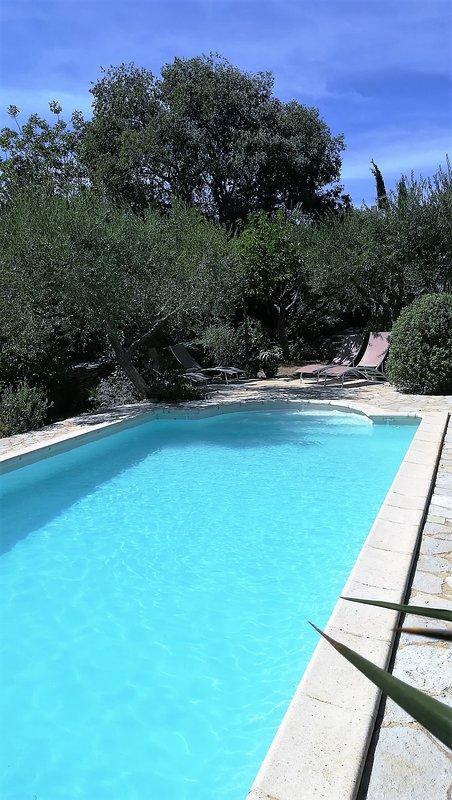 ligbedden naast zwembad