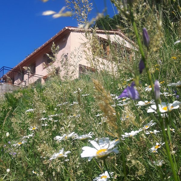La Maison du Loup, holiday rental in Brianconnet