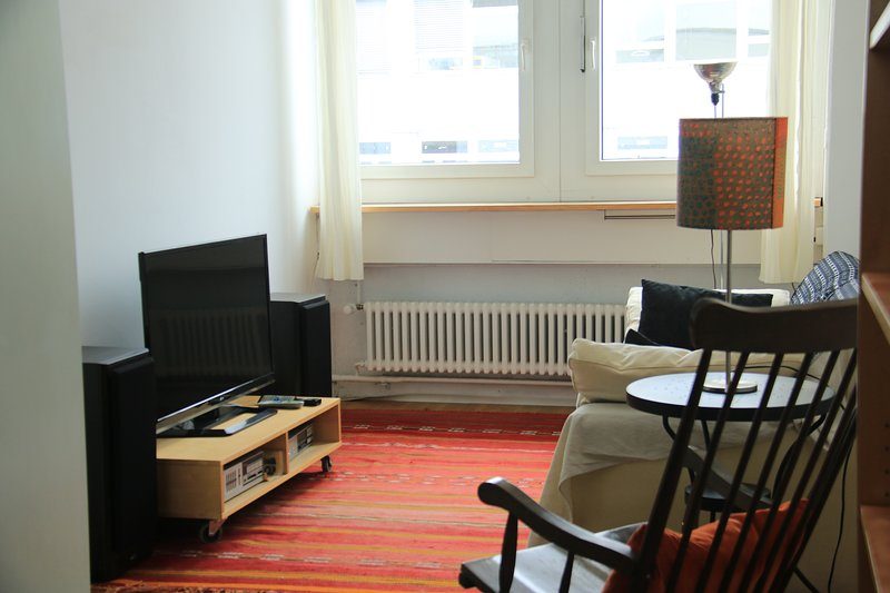 spacious loft in the center of Staefa, holiday rental in Alpthal