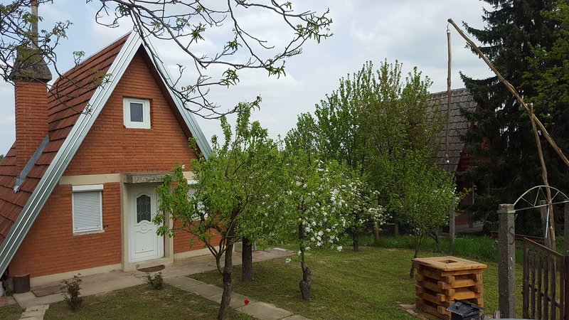 House Apathy / Kuca za odmor Apathy, holiday rental in Vukovar