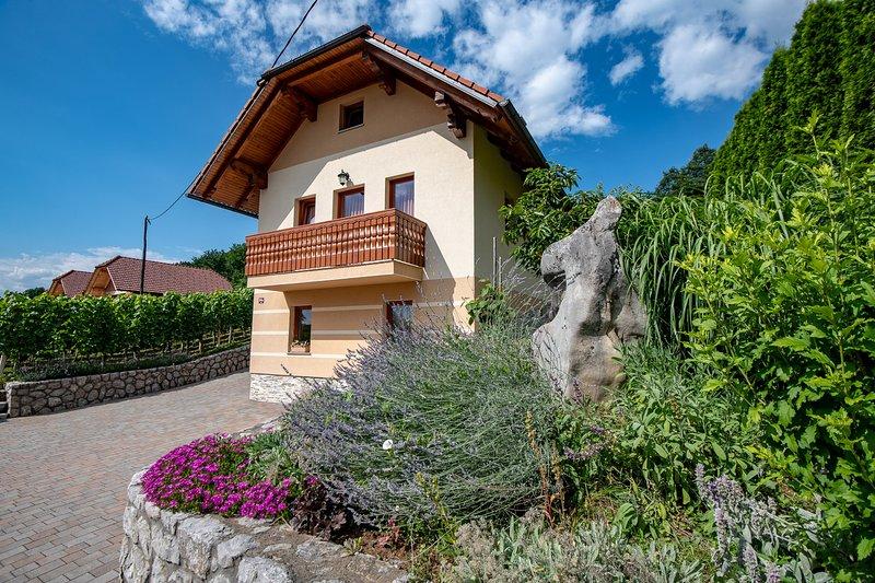 Vineyard cottage - Zidanica Pod Piramido, holiday rental in Straza