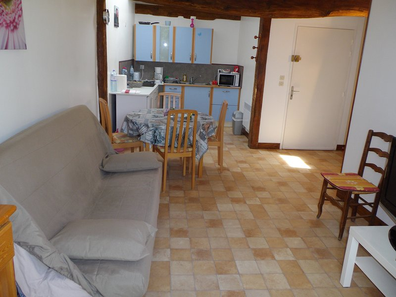 la grange appartement entier de 3 pieces pour 5 personnes, location de vacances à Ville de Chantilly