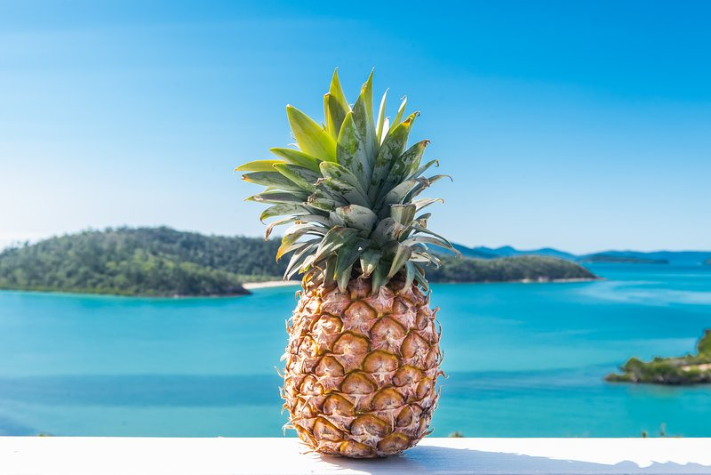 Pineapple House Whitsundays - absolute Waterfront - Island