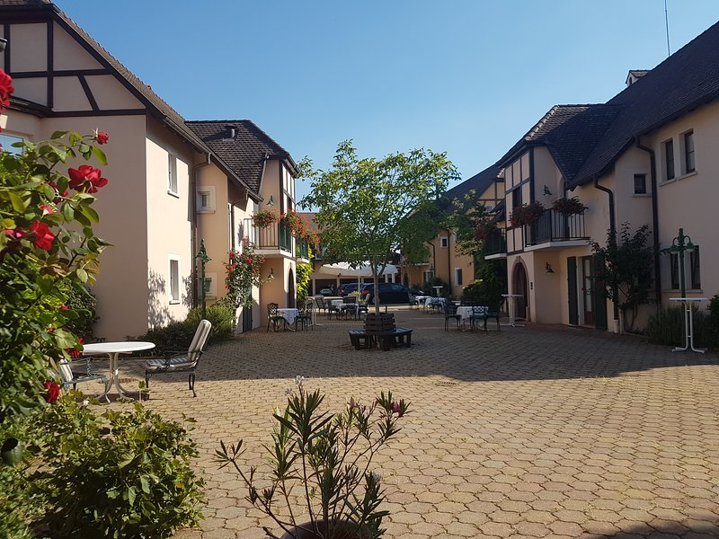 Appartement Duplex sur la route des vins d'Alsace, holiday rental in Beblenheim