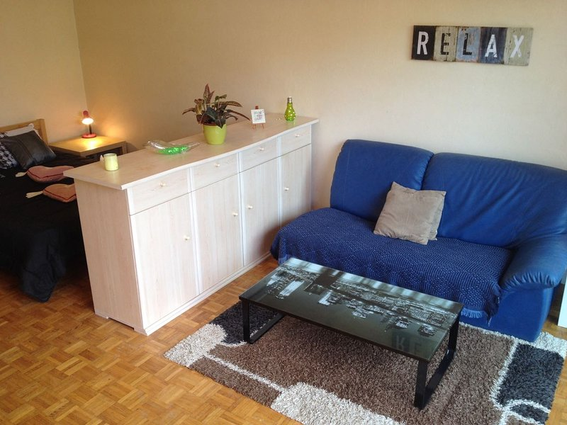 SPACIEUX STUDIO MEUBLE AVEC JARDIN-TERRASSE PRIVATIF, vacation rental in Palaiseau