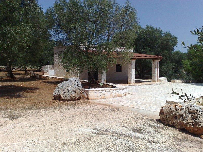Casale Valle Degli Ulivi, vacation rental in Chianchizzo I