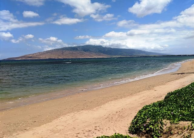 Maui Sunset 421A ~ Spectacular Sunsets from this 2 Bedroom, 2 Bath Condo!, holiday rental in Kihei