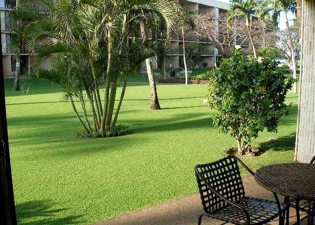 Summer Special!  Maui Sunset 105A ~ 1 BR, 2 BA Ground Floor Condo!, location de vacances à Kihei