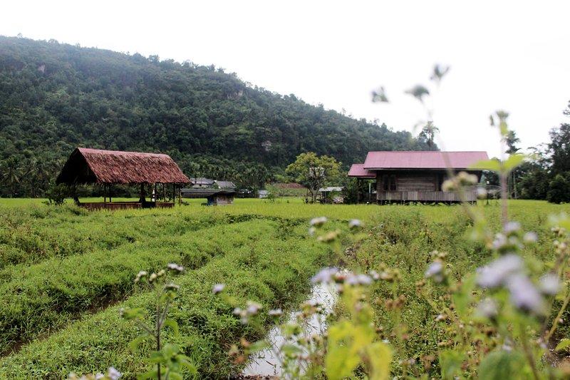 Farm Stay of Harau Valley, holiday rental in Sumatra