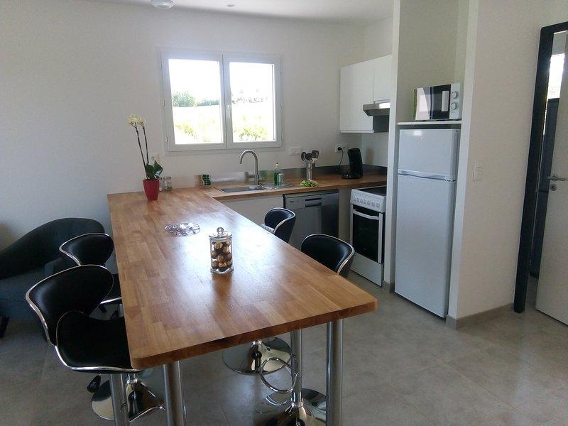 Maison neuve, divisée en 2 logements indépendants, entièrement équipés, holiday rental in Serenac