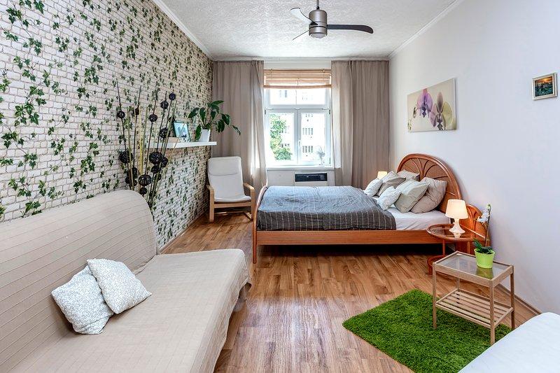 Grande chambre avec AC et ventilateur de plafond