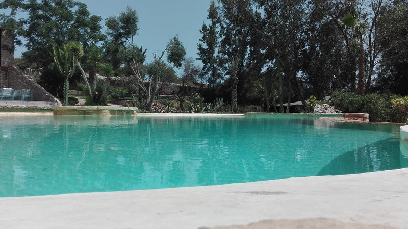 Outstanding luxury mansion in the countryside, alquiler de vacaciones en Ghazoua