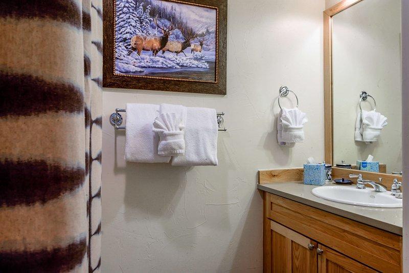 Third bathroom (lower level)