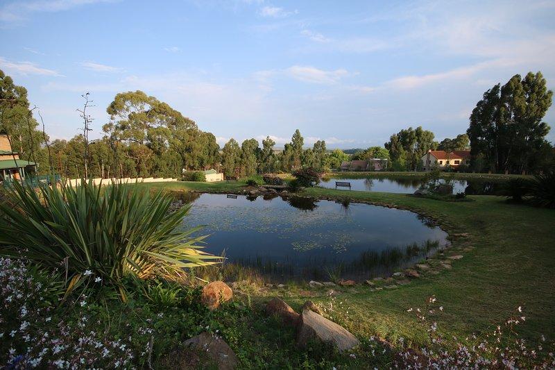Blick über Dämme und Mpumalanga Hiveld Plateau