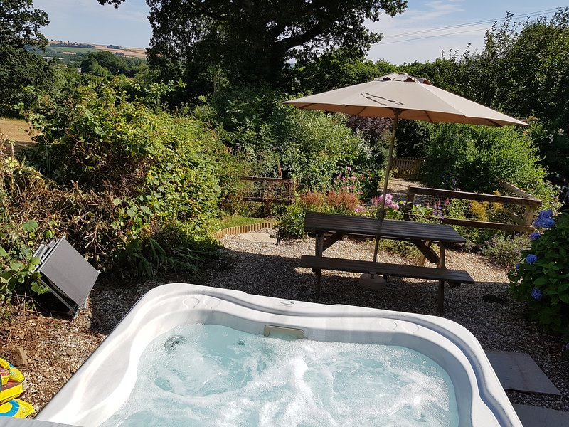 Luxury Devon Cottage- Beautiful views, hot tub,  private garden, walk to pub, holiday rental in Sheepwash