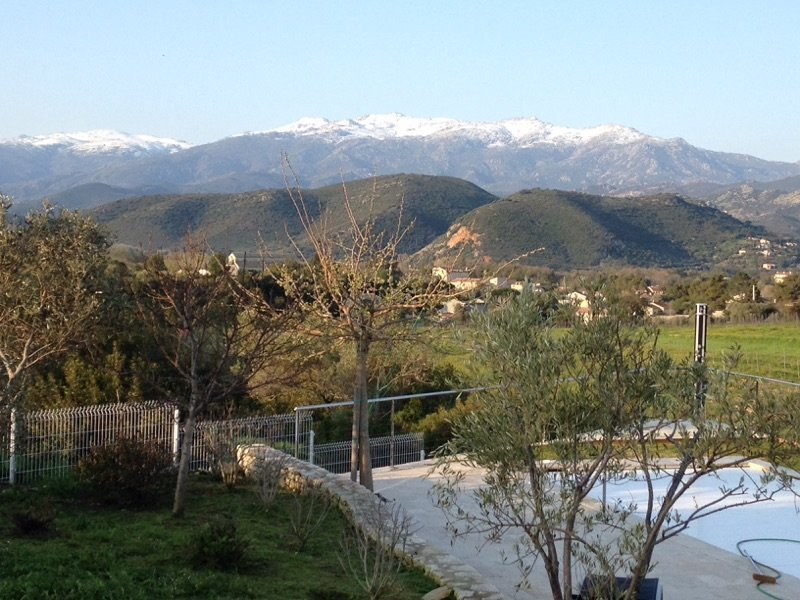 the olive trees, the swimming pool the vineyards the mountain in april