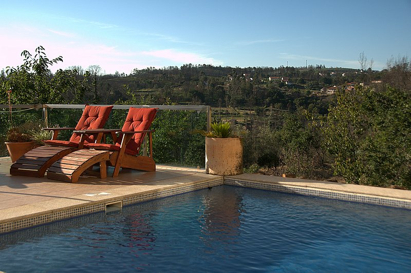 Girassol - Modern self-catering apartment with pool, garden and terrace, sleep 3, location de vacances à Santa Comba Dao