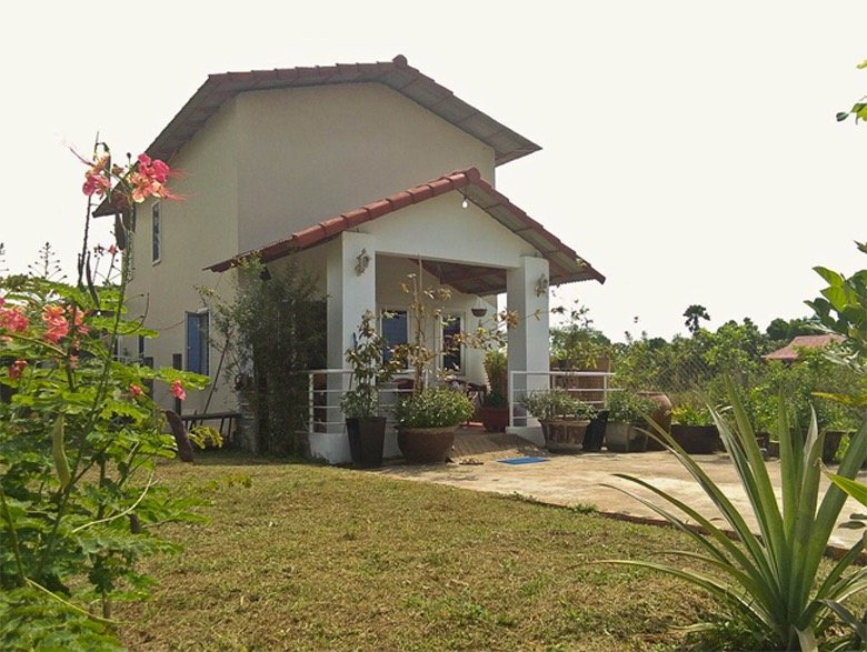 The house/garden