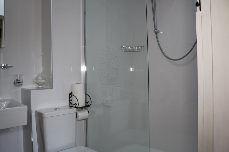 Large walk-in shower, with shampoo, conditioner and body wash provided for use during your stay.