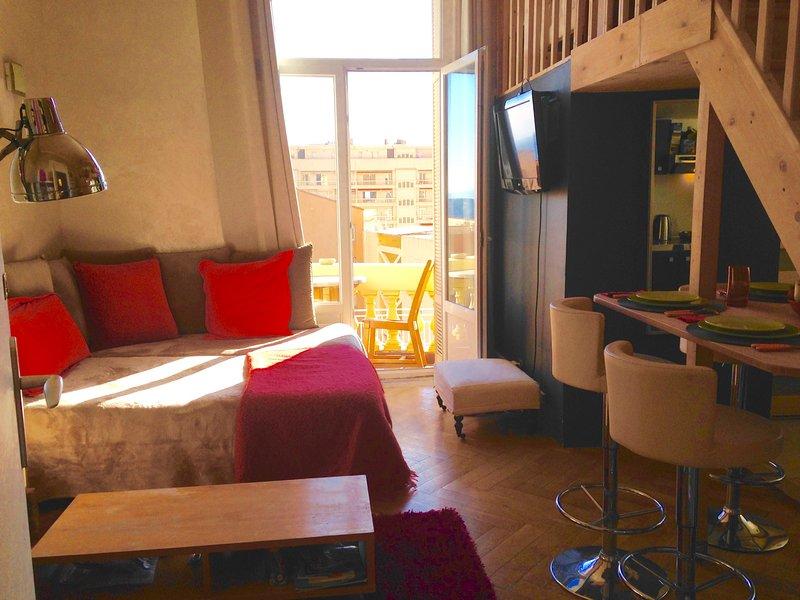 Appartement ville Monaco Beausoleil, 2 pas Monaco parking domicile 20E par jour, vacation rental in Monaco-Ville