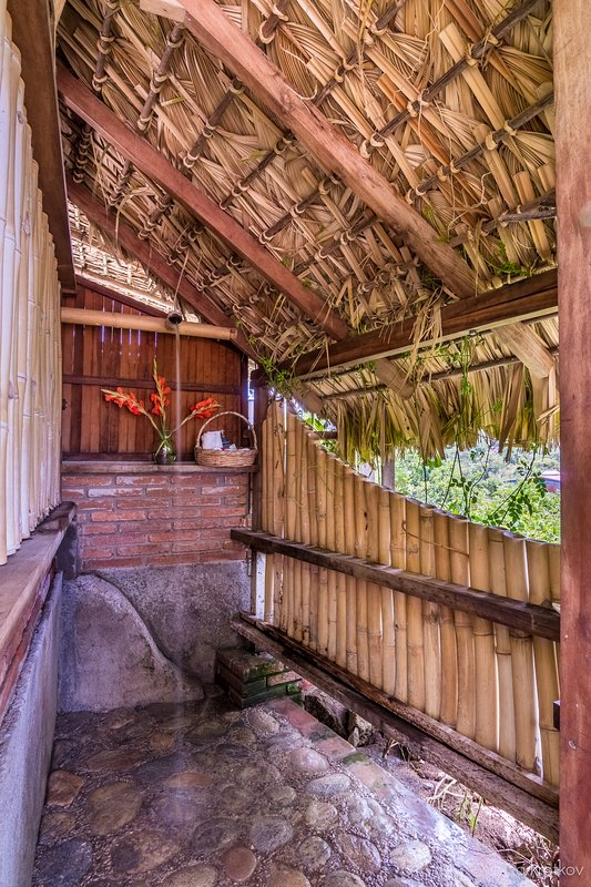 Bamboo Shower