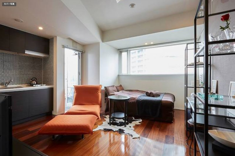 #3, Small Stylish Studio, holiday rental in Ginza