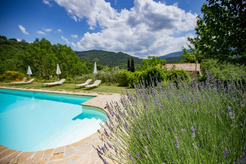 Giotto - Casa Rosa, holiday rental in San Presto
